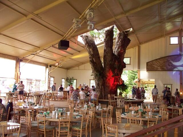 special event tent rental